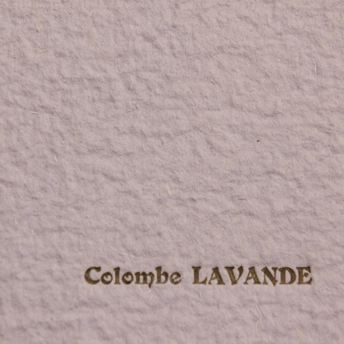 COLOMBE LAVANDE 50*65