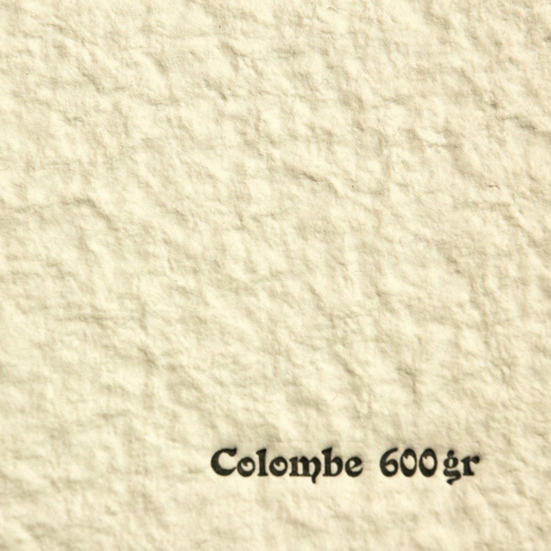 COLOMBE BLANC 600 50*65